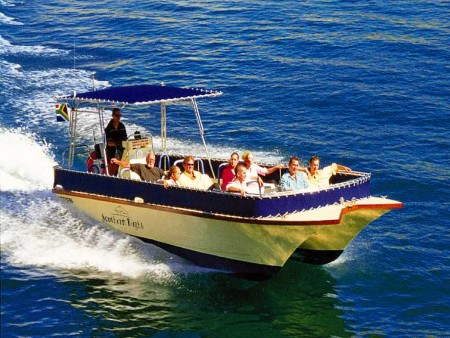 Cape Town Boat Trips, Seal Island from Simonstown
